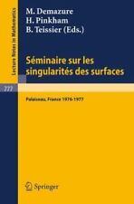 Seminaire sur les Singularites des Surfaces: Centre de Mathematiques-ExLibrary