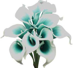 🌺🌺 Teal Calla Lily Flowers Zantedeschia Aethiopica Plant Bonsai Seed FS07-10