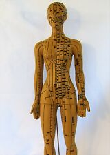 "19"" human acupuncture model female anatomical sculpture figurine brown New"