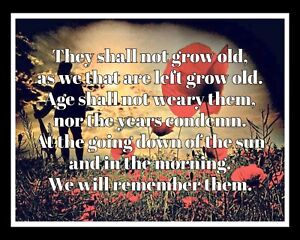THEY SHALL NOT GROW OLD WE WILL REMEMBER THEM POPPY POPPIES METAL PLAQUE R53