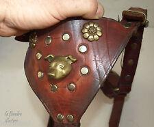 superbe harnais ancien pour chien en cuir et laiton - art populaire