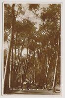 Dorset postcard - The Pine Walk, Bournemouth - RP - P/U 1931 (A297)