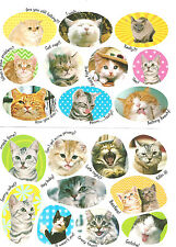 Adorable Cute Kittens Cats Scrapbook Stickers (1B)