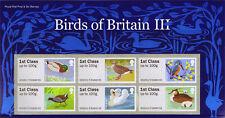 BIRDS 3   2011  PRESENTATION PACK   Post   &  Go