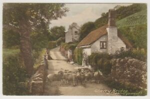 Devon postcard - Cherry Bridge near Lynmouth (A3762)