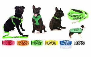 Warning Dog Colour Coded Collar Lead Leash Harness Friendly Blind Sizes & Styles