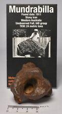 "MUNDRABILLA IRON METEORITE with craters, ""RARE"" 163 grams AUSTRALIA MT17"