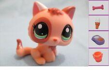 Littlest Pet Shop Cat Baby Kitten 1818 w Free Accessory Authentic Lps Exclusive