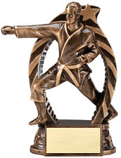 """1 Male karate trophy, new design 5.5"""" tall, with engraving, martial arts"""
