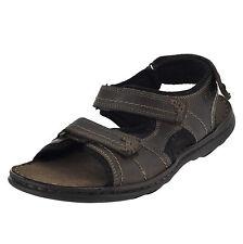 cc0272b7a812 Clarks Sandals   Flip Flops for Men 13 US Shoe Size (Men s) for sale ...