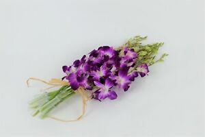 Fresh Cut Orchids Bouquet - Vibrant Purple Sonia/Galaxy/Bombay