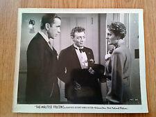 THE MALTESE FALCON - scarce vintage US 8x10 #48 HUMPHREY BOGART John Huston