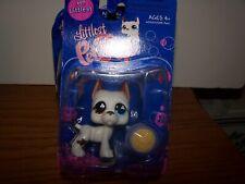 LPS Littlest Pet Shop White Great Dane # 577 Brown Eye Blue Hasbro Food Bowl
