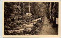 WILDBAD ~1910/20 Bäume Bach Enz-Anlagen Loebich Verlag