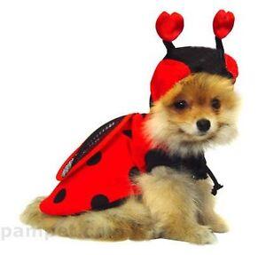 Ladybug dog costume jacket shirt extra SMALL 20cm TO small 25cm DOGS - New