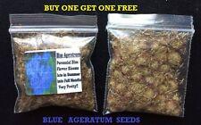 Buy 1 Get 1 Free Blue Perennial Ageratum Flower Way Over 2,000 Seeds 4 U