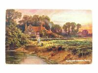 Antique colour printed postcard Smithwood Common Surrey S Hildesheimer & Co