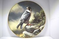 Four Royal Doulton Collectors Plates - Masters of the Sky (Limited Edition)