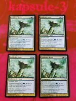 4x Leafdrake Roost | Dissension | MTG Magic Cards