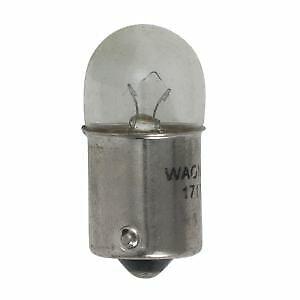 Wagner 17171 Lamp Assy Sidemarker