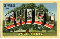 Greetings From CHICO California Linen Postcard BIG LETTER Litho (a