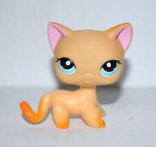 Littlest Pet Shop Blue Eyes Yellow Orange Short Hair Cat Kitty Figure Toy UK