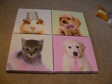 X4 ANIMAL PICTURES. GUINEA DOG AND CAT. LOVELY DESIGNS NEW. SEE PICS.