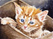 """Im Karton"", Katze, Cat, Chat, Gato, Original Aquarell 24x32, Studio-Milamas"