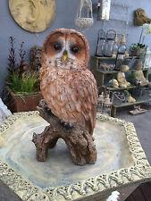 Tawny Owl Life Size Owl Garden Sculpture