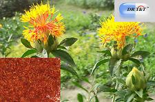 DR T&T 100g erbe secche Hong Hua (Flos Carthami) Carthamus tinctoriu