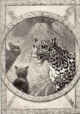 EAU FORTE / Fables de la Fontaine 1883 / LE LION