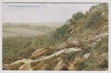 Yorkshire (North) postcard - Harrogate, Birk Crag - P/U 1913