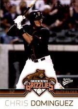 2012 Fresno Grizzlies Multi-Ad #5 Chris Dominguez Miami Florida FL Baseball Card