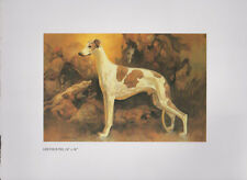 "Roy Anderson.Print   ""GRAYHOUND"" Dog Art Print   - Western Art"