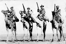 Photo. 1910s. Palestine.  Camel Corps