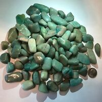 Amazonite - Tumbled and Highly Polished - 1 Pound Lots ~ (85) Gemstones