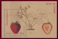 2012 FRANCE BLOC F4535** Fête du timbre Fraise, Fraisier, strawberry sheet MNH