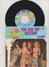 "The Hornettes, You are my destiny, Promo Info,  7"" Single"