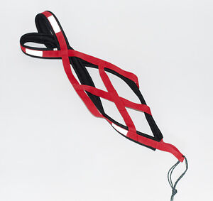 X-back dog harness bike and ski joring, canicross, sledding, mushing