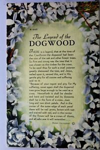 Scenic Legend of the Dogwood Postcard Old Vintage Card View Standard Souvenir PC