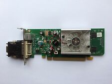 SFF ASUS CARDINAL GEFORCE 8400GS 256MB PCIE DVI TV G86_P413/BPC WITH VGA ADAPTER