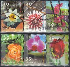 Nederland  -  Zomerzegels  -  2002  -  NVPH 2077-2082  -  gestempeld