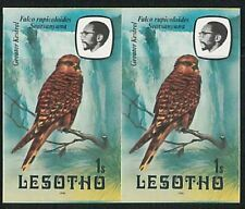 56555 -  BIRDS  - LESOTHO -   IMPERF Pair of stamps MICHEL 330 I -- very nice!
