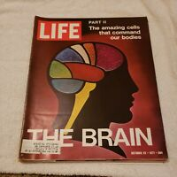 Life Magazine / October 22 1971 / The Brain Part II