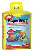 Infecções por fungo
