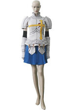 Anime costumee Fairy Tail Erza Scarlet Cosplay Costume L005