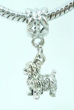 3D Terrier or Shih Tzu Dog Lover Slider Charm for European Bracelets Or Necklace