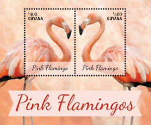 Guyana - 2014 - Pink Flamingos - Souvenir Sheet - MNH