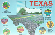 Texas   Land of Contrast   Outline of State  TX   Unused  Chrome Postcard