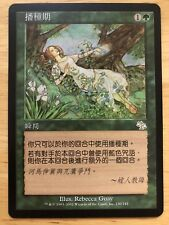 Seedtime Chinese Judgment mtg NM
